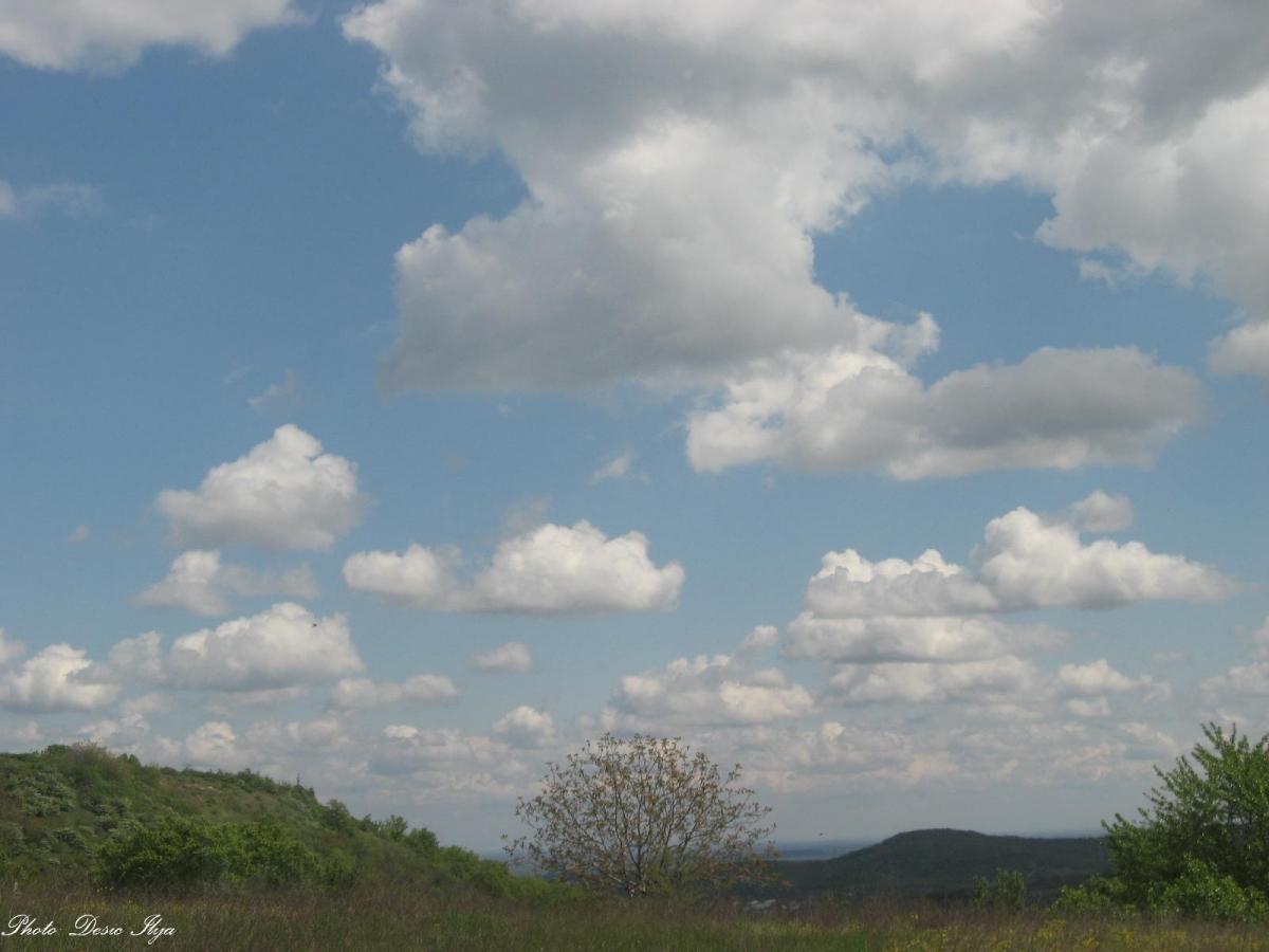Spring Sunny Day April 2014. ;)