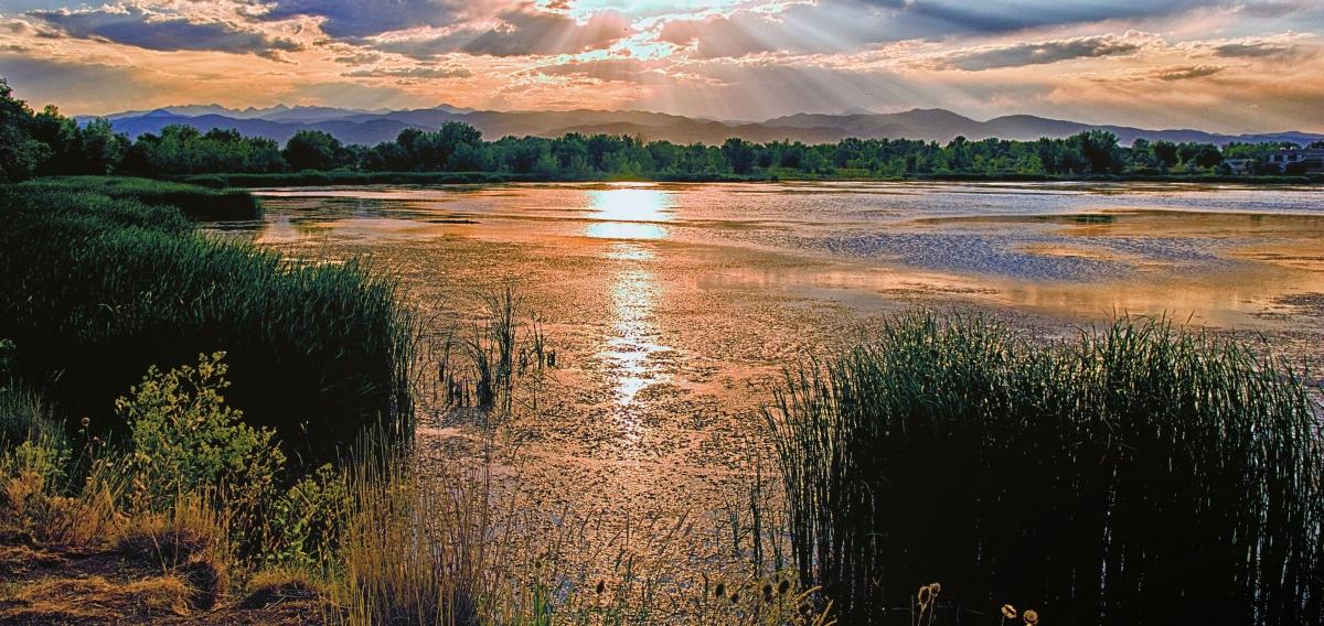 Walden Ponds Sunset