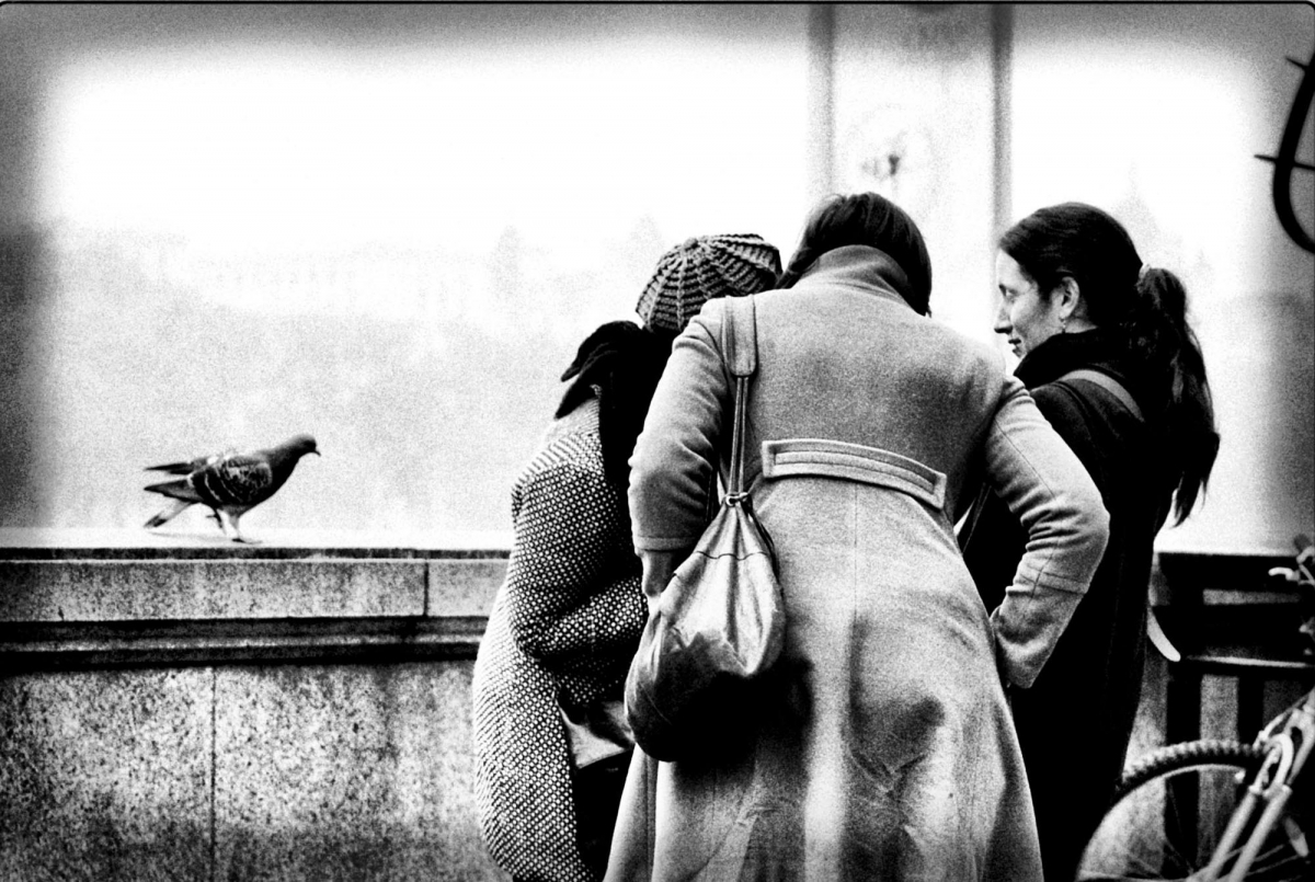 Women whispering with a dove listening.