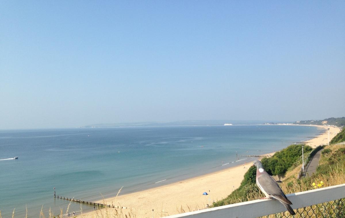 Bird's View of Bournemouth Beach