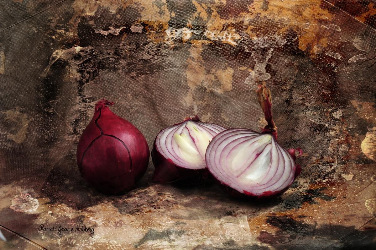 'Onions' by Randi Grace Nilsberg