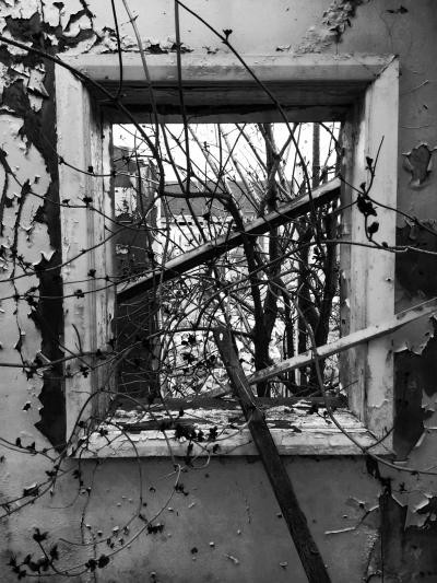 Urban decay 1