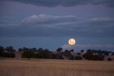 Moonrise over Somerton