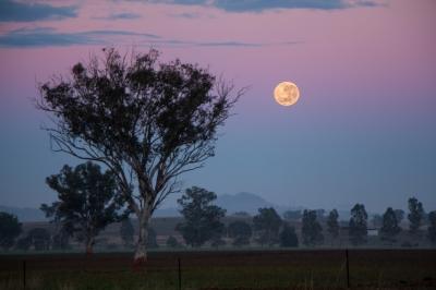 Moonset over Somerton