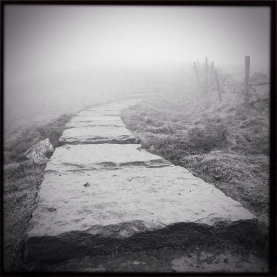 Road into the fog