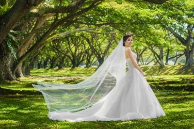 Bridal and Veil