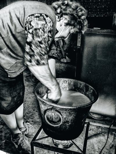 Producing goat-cheese at Lake Bolsena