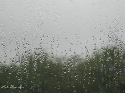 Rainy Day. 14.05.'14. ; )