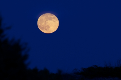 The Supermoon from the dunes of Formentera