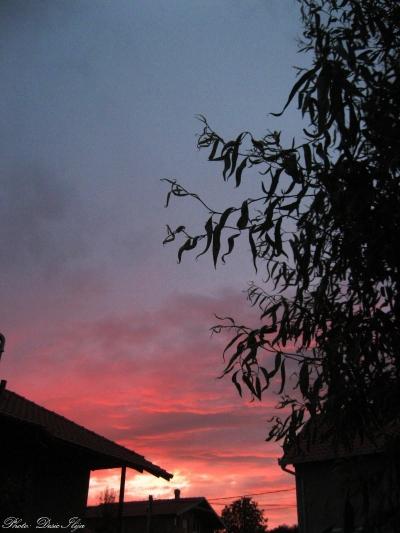 Red Evening Sky. 26.05.'14. ;)