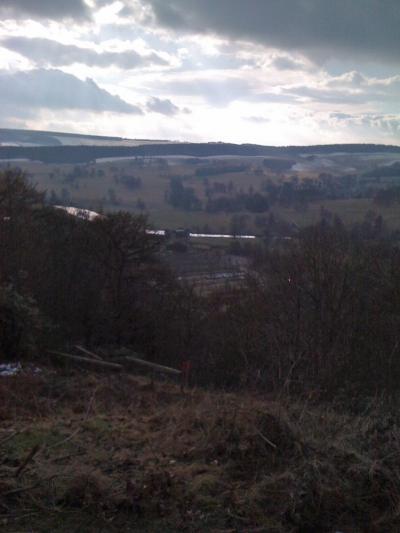 Chatsworth Grounds