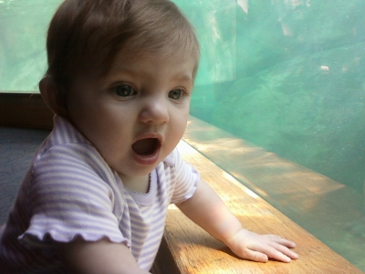 Granddaughter at the Zoo
