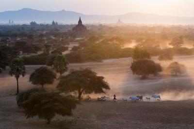 Bagan Evening