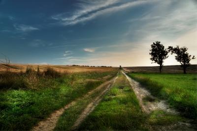 Straße des Lebens