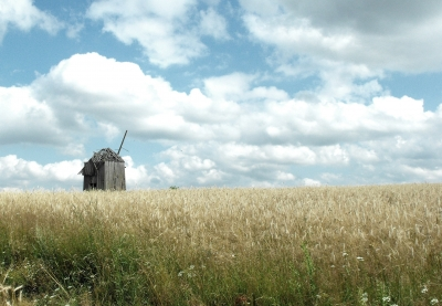 The old windmill.