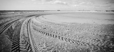 Tracks on a morning beach