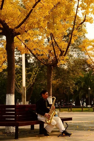 Shanghai autumn