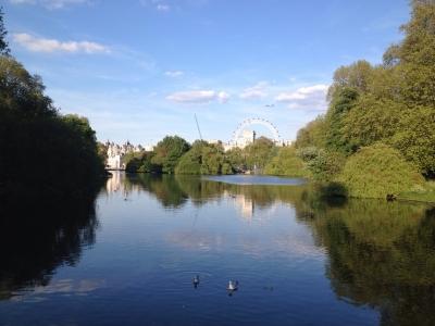 Half London Eye from Regent's Park