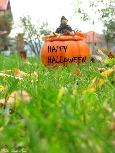 Halloween ; )