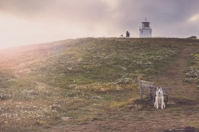 Laikas Lighthouse