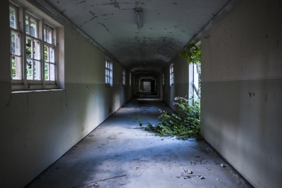 Dereliction with Nature