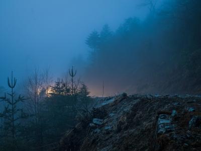 Himalayan Glow