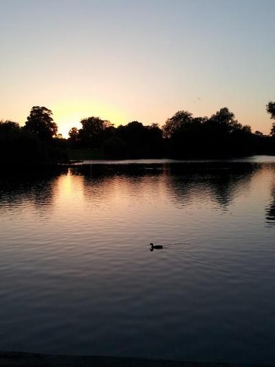 St Albans lake
