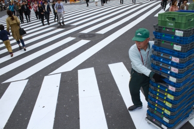 Shinjuku Zebra Crossing