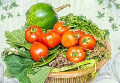 veg busket