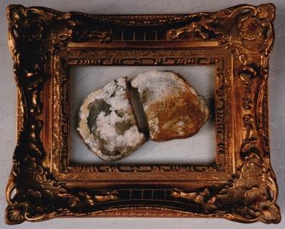 Waste Not Want Not - le pain quotidien