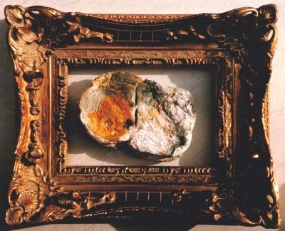 Waste Not, Want Not - le pain quotidien 3