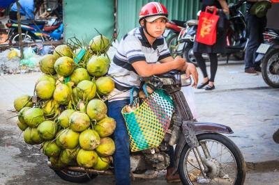 coconut bike