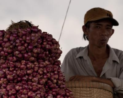Mekong Onion Trader