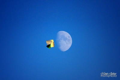Fly To Moon
