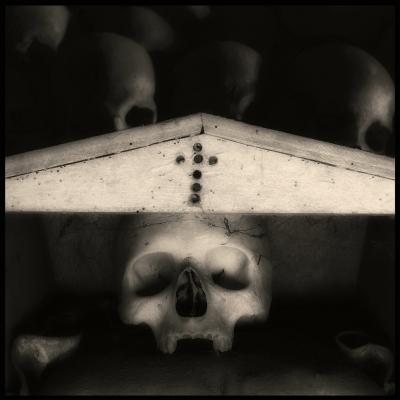 ( Skulls ) - fotografia Augusto De Luca. 5