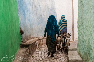 The streets of Harar